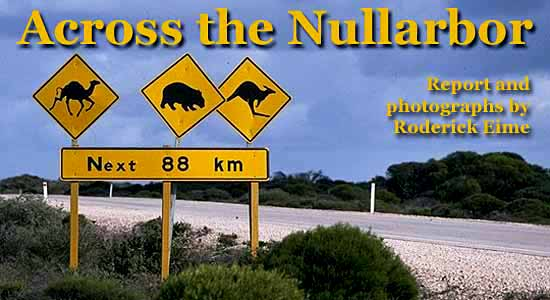 Across the Nullarbor